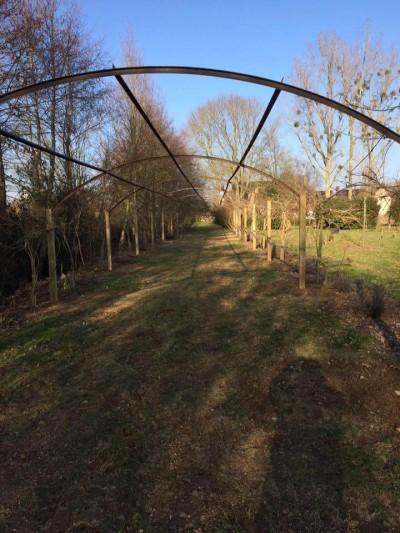 Pergola archives fc paysages for Entretien jardin sarthe