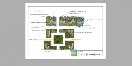 plan de remise en état d'un jardin à la française avec noms des végétaux inclus